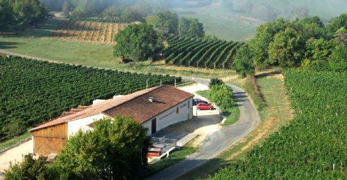 Dordogne Périgord: Cave du Vin de Domme bij Moncalou.