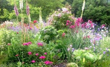 Jardins Ouverts: in Dordogne stellen 7 eigenaren hun tuinen open voor bezoekers.