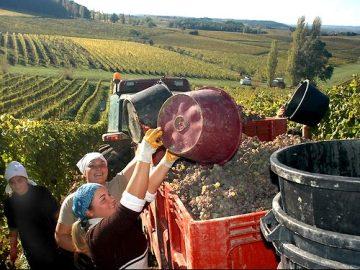 Dordogne: Route des vins de Bergerac.