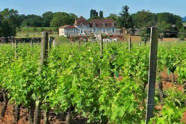 Dordogne Périgord: medailles d-or voor wijnen uit Dordogne tijdens Concours de Bordeaux-Vins d'Aquitaine 2017, waaronder Domaine de Grange Neuve