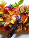 Dordogne Périgord - restaurants Michelinster Guide Michelin 2021